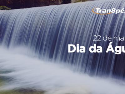 Dia Mundial da Água: compromisso Transpézia de cuidado e preservação. - Transpezia